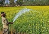 सरकार ने किसानों के लिए एडवाइजरी जारी की